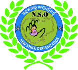 Thumb nso logo